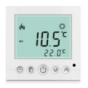 termoregulator3